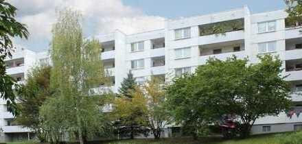 Sofort bezugsfrei! Schöne 4 Zimmer Wohnungen in Waldrandlage