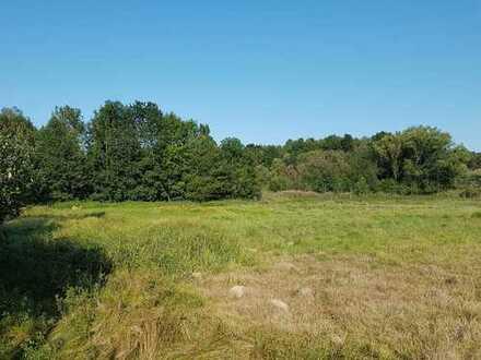 Sonniges Wiesengrundstück im Landkreis Mühldorf