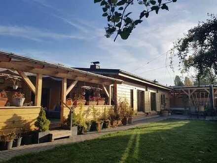 Holztraumhaus in Marienthal - Anders als die Anderen