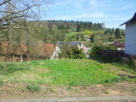 VG Enkenbach - Alsenborn, Ortsteil Neuhemsbach - Sonniger Bauplatz in Ortsrandlage