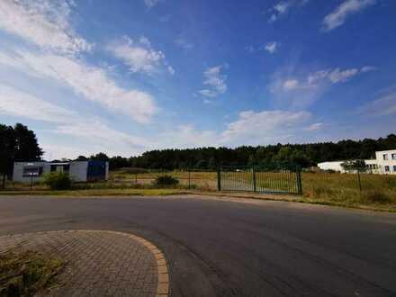 Grundstück an der A12 nahe BER und TESLA, vom Eigentümer!