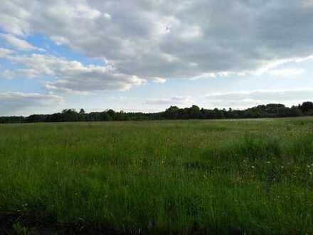 Wiesengrundstück in Weiskirchen OT (kein Bauland)