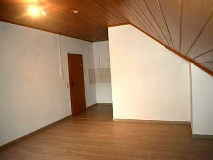 Großes 1 Zimmerapartment mit Blick ins grüne