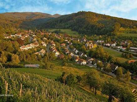 Für Kapitalanleger: Mehrfamilienhaus in zentraler Lage von Sulzburg