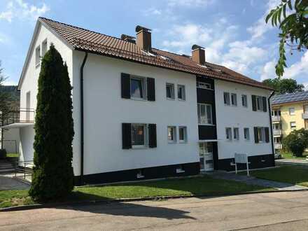 *RESERVIERT* Mehrfamilienhaus mit 8 Wohnungen zu verkaufen/Top Kapitalanlage in Baden-Württemberg