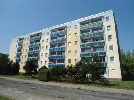 Frisch renovierte 3- Zimmer Wohnung