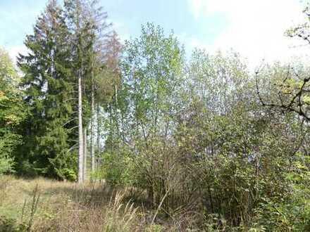Lkr. Kronach - Grundstück/Waldfläche