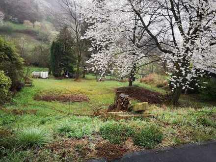 Verträumtes Aufwachen in Haibach Grünmorsbach