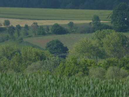 Landwirtschaftliches Grundstück (Wiese)