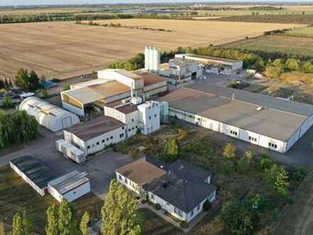 28.527 m² Gewerbeareal mit u.a. 2.500 m² gr. Gefahrguthalle und 300 m² Bürogebäude, nahe A9 und A14