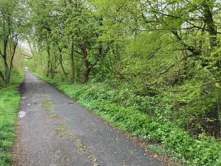 TT bietet an: Grundstücksbrache mit 3.375 m² Fläche im Landschaftsschutzgebiet!