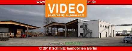 Innovative Thermoholz Fabrikanlage in Premnitz