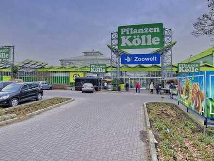 Verkaufsfläche im Pflanzen-Kölle Teltow zu vermieten