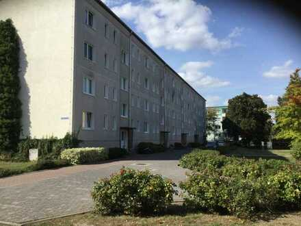 3 Raum Wohnung in Torgelow