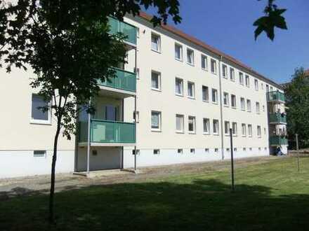 Mach mich fertig - Eigentumswohnung im Rohbauzustand in Riesa