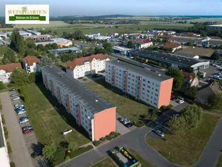 Helle renovierte Wohnung im Grünen. 2-Zimmer (48qm)