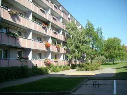 Große 2-Raumwohnung mit Wohnküche
