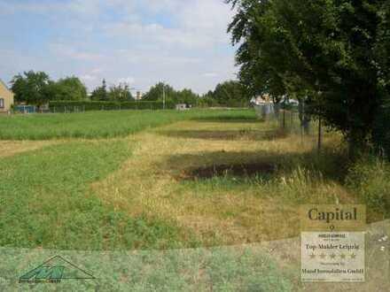 großes Grundstück in Kötzschau zu verkaufen- kein Bauland