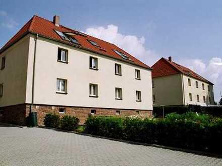 Großzügige 2-Raum Mansarde mit Blick ins Grüne - in Friedrichsgrün -