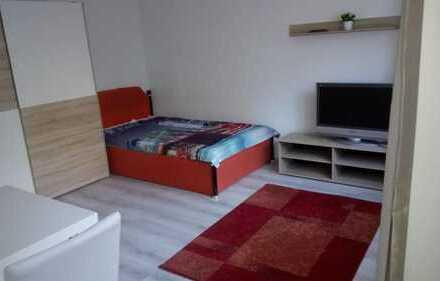 Komplett möblierte Ein-Zimmer Wohnung in Fürth, Ronhof / Kronach