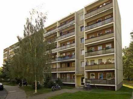 Wohnen im Grünen und doch in der Stadt. Helle und sonnige Wohnung in der Nähe der Dresdner Heide.