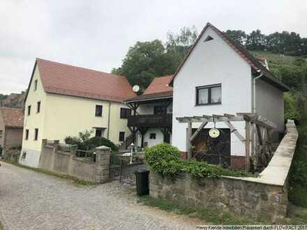 Zwei idyllisch gelegene Einfamilienhäuser mit unverbaubaren Elbtalblick in Diesbar-Seußlitz