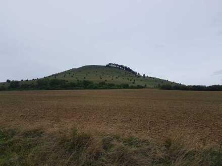 [reserviert] Ca. 1.200qm - 1-2 Baugrundstücke in Bopfinger Top-Lage direkt am Ipf