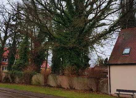 DHH und EFH in Alerheim, Immobilie mit Potenzial
