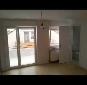 Exklusive, vollständig renovierte 1-Zimmer DG Wohnung mit Balkon & EBK in Schloss Nähe