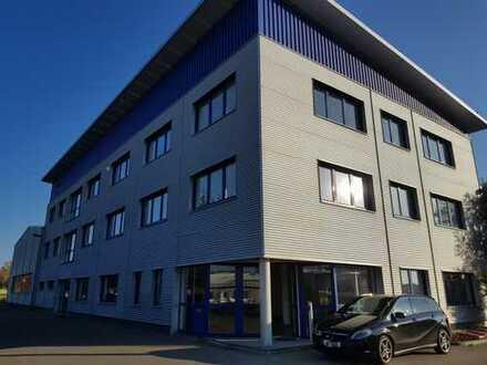 Büroräume 117m² / 215m² / 380m²