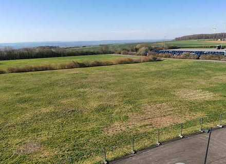 23.500 m² Freifläche - 1 KM von der A8 Autobahnausfahrt Perl-Borg