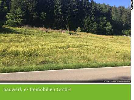 Alpirsbach: Ihr neuer Bauplatz im Mischgebiet mit vielen Möglichkeiten!