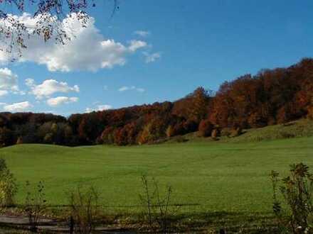 Gepflegtes Wohnen im Park - 82319 Starnberg