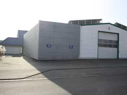 Attraktive Gewerbehalle mit 85qm Kühlzelle in Top-Lage Lorsch zu vermieten