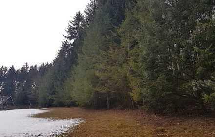 8230m² Waldgrundstück in Waldkirchen