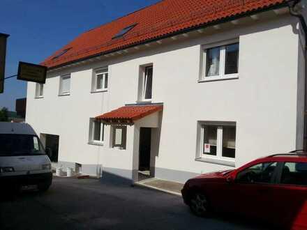 4-Familienhaus zur Kapitalanlage - renoviert - Blick auf den Park Ochsengarten