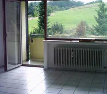 Vollständig renovierte 1-Zimmer-Wohnung mit Balkon in Daun