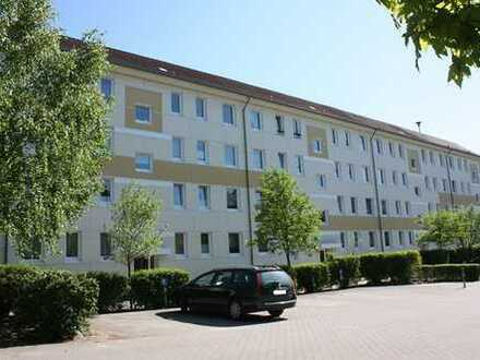 """3-Raum Wohnung in der """"Alten Siedlung"""""""