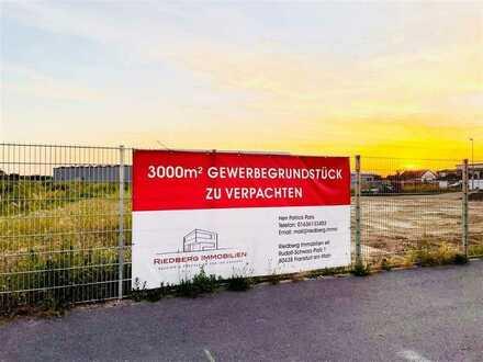 3.000m² Gewerbegrundstück in Büttelborn zu verpachten