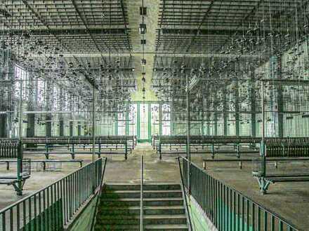 3600 m² große Kaue im Herzen des CreativRevier Heinrich Robert zu vermieten