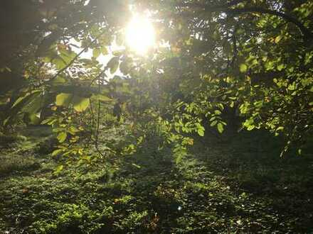 Dortmund, Mengede, Mengeder Heide, 3 Fam Haus mit gr Grundstück