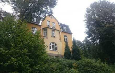 Schöne, geräumige 1 Zimmer Wohnung in Vogtlandkreis, Auerbach/Vogtland