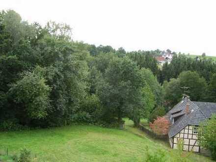 Sehr ruhige 2 1/2 Zimmer-Terrassenwohnung am Waldrand