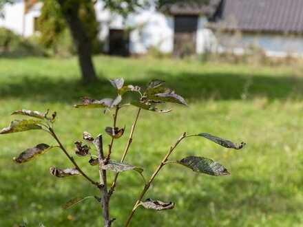 Traumgrundstück in Alpirsbach-Reinerzau