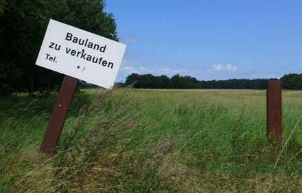 Grundstück in Falkensee OT Finkenkrug - BAUTRÄGERFREI - jetzt sichern
