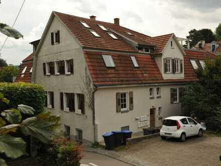 Modernisierte 2-Zimmer-Wohnung mit Einbauküche, Hochbett, Bücherregal in Esslingen am Neckar