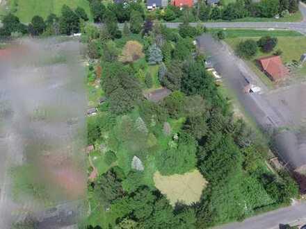 - Großes Baugrundstück in zentraler Lage von Hohnstorf - Provisionsfrei -