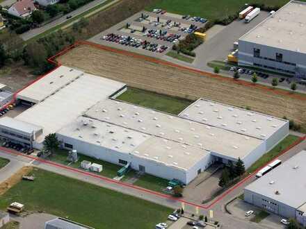 Gewerbeimmobilie mit Büro-, Produktions-, Lager- und Versandflächen