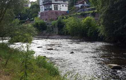 +++ Naturnahes Wohnen am Ufer der Nagold +++