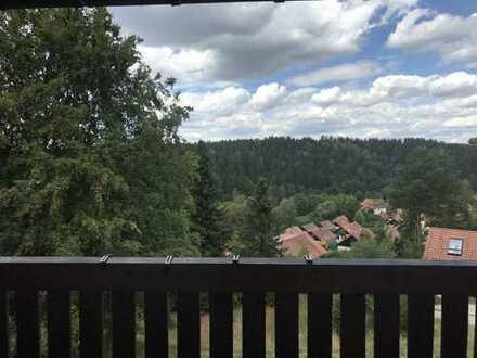 Voll möblierte Ferienwohnung im Oberpfälzer Wald